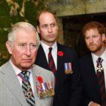 La nula paternidad del príncipe Carlos
