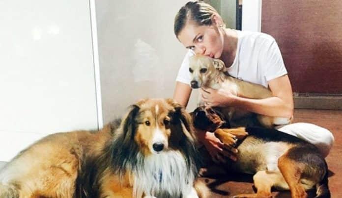 Miley Cyrus y sus mascotas
